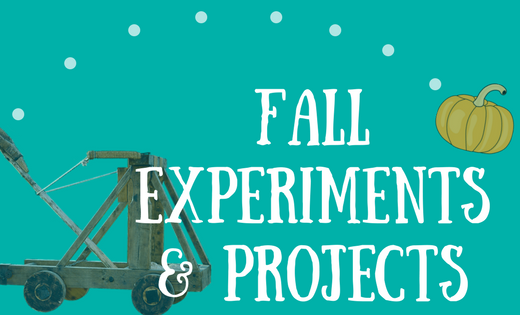 Fall Experiments and Projects