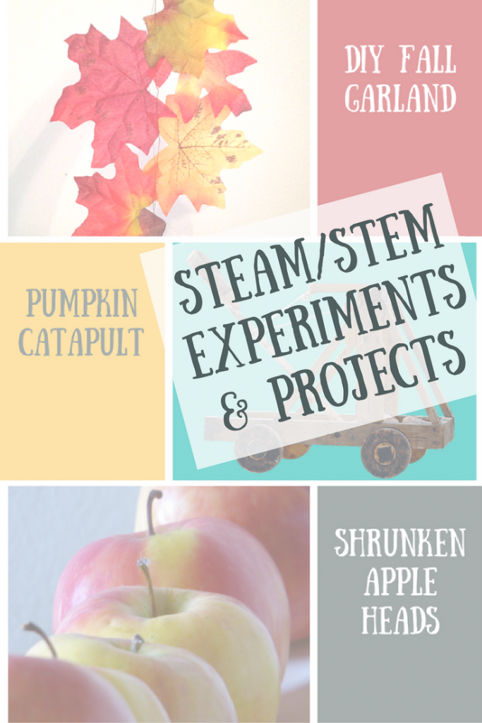 Fall Experiments and Projects | STEAM / STEM